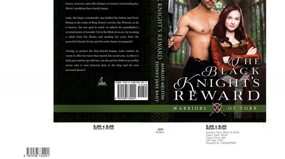 The-Black-Knight's-Reward